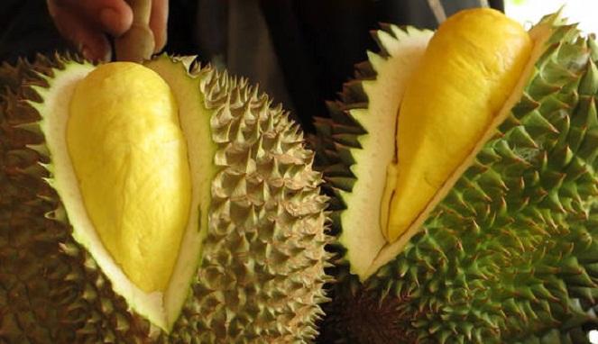 1520606995Buah_durian.jpg