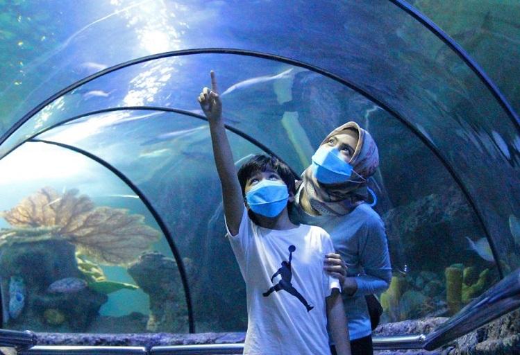 Wisata Ancol Kembali Dibuka Untuk Umum, Berikut Ketentuan Bagi Pengunjung