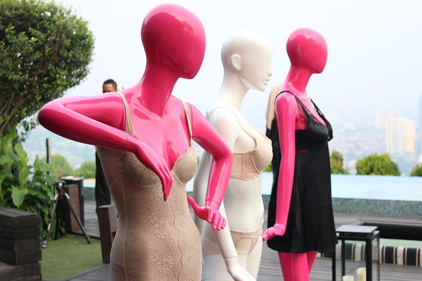 Tidak Hanya Penampilan Luar, Wanita Harus Mengerti Pakaian Dalam