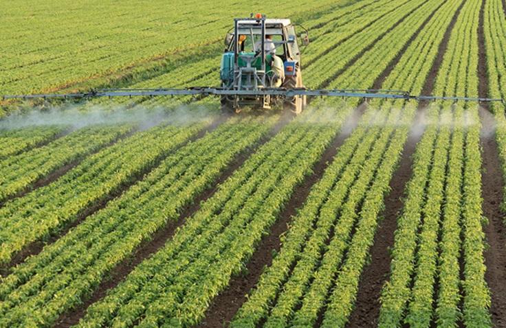 Manfaatkan Bonus Demografi, Kementan Siapkan Terobosan Transformasi Pertanian
