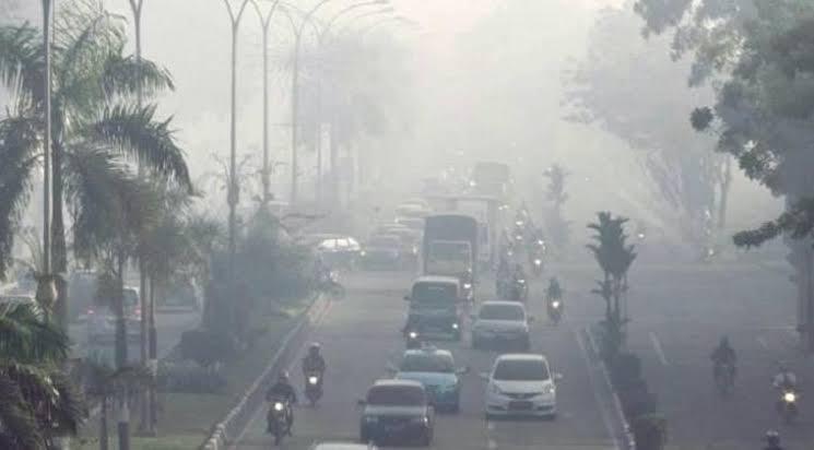 Dampak Karhutla, Udara di Tiga Kota Ini Tidak Sehat!