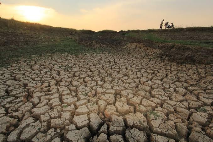 Kemarau Panjang, Kekeringan Juga Ancam Jakarta