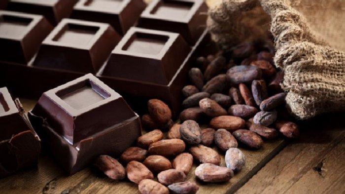 Catat Devisa Hingga USD 1,13 Miliar,  Manisnya Industri Coklat Bikin Gemuk Devisa Negara