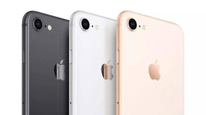 Chip iPhone SE 2 yang Bakal Rilis Sama dengan iPhone 11, Cek Harganya!